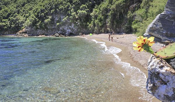Insel Elba, Italien, Mittelmeer, Strand, Ferien, Porticciolo