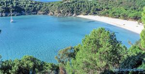Strand Le Tombe auf der Insel Elba