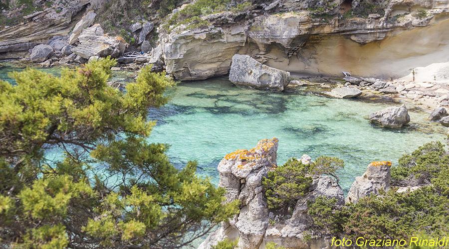 Toskana Pinaosa Island National Park des Toskanischen - Transparentfolien blaue Meer in Cala Burned