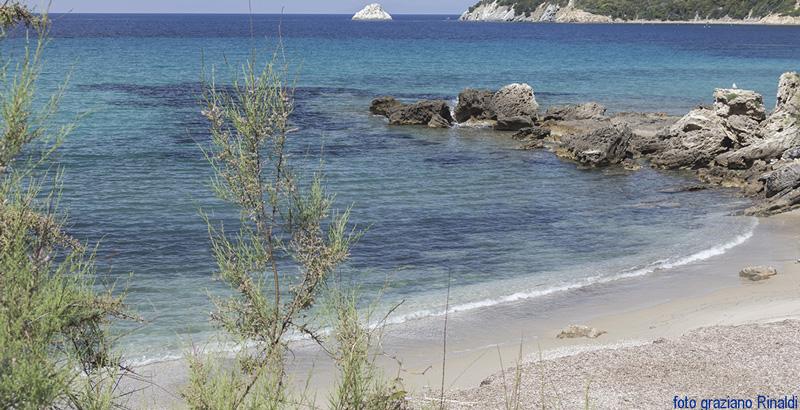 Insel Elba: Bucht von Viticcio