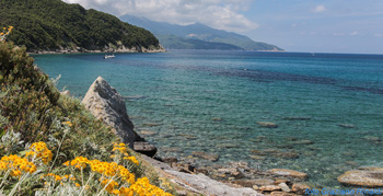 Elba Island, Viticcio, sea, beach