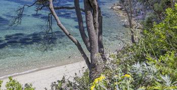 Insel Elba, Mittelmeer, Porticciolo