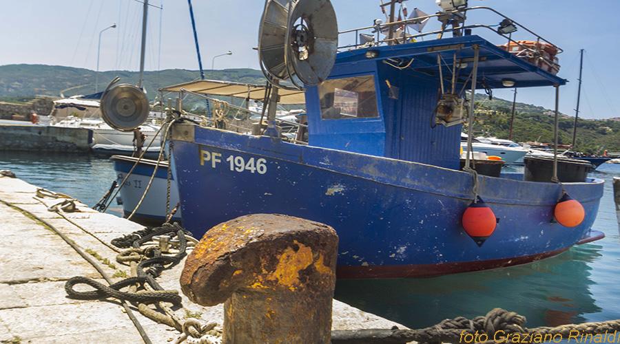 Insel Elba, Porto Azzuro, Boot, Italien, Toskana, Hafen